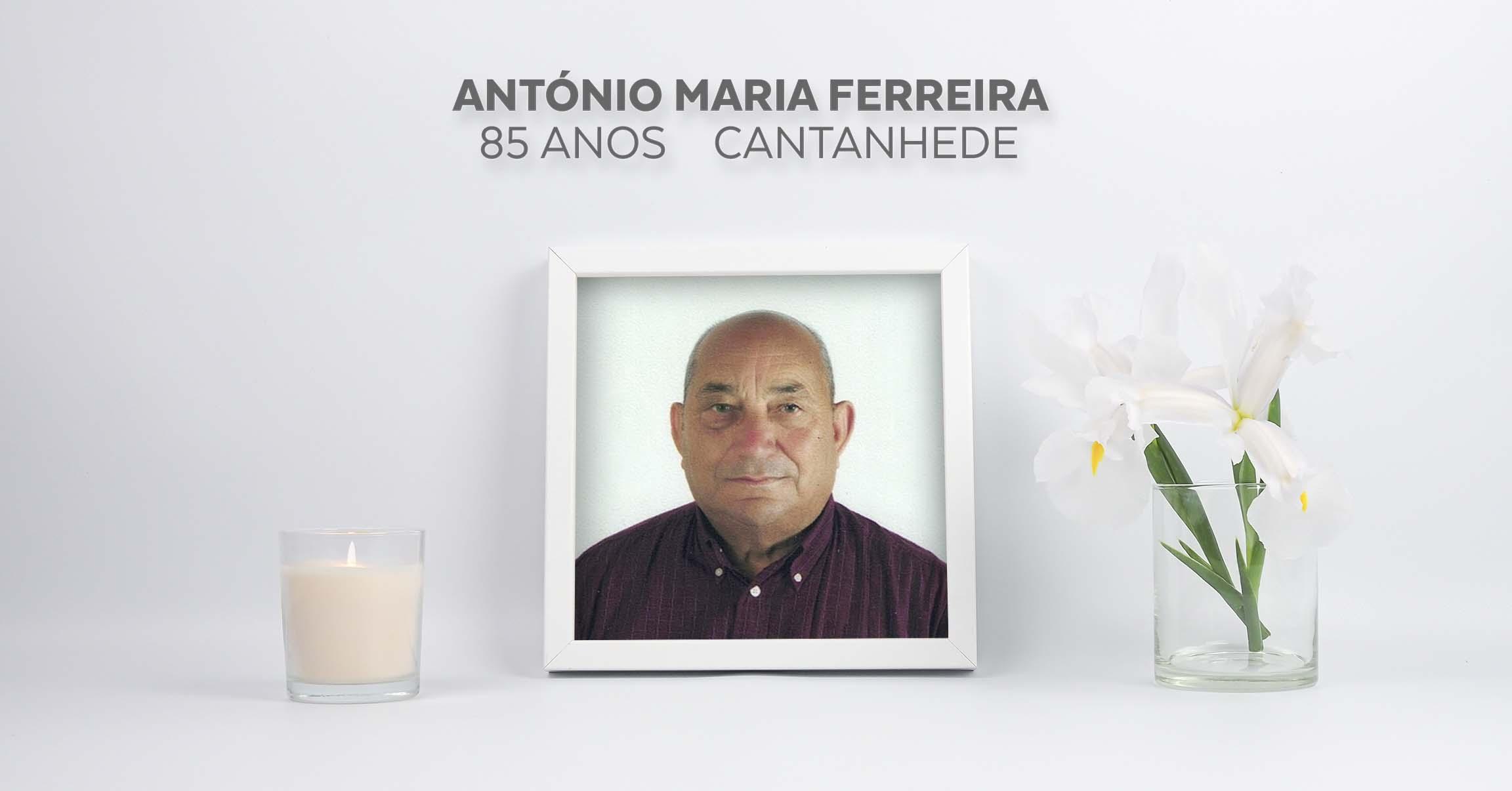 António Maria Ferreira